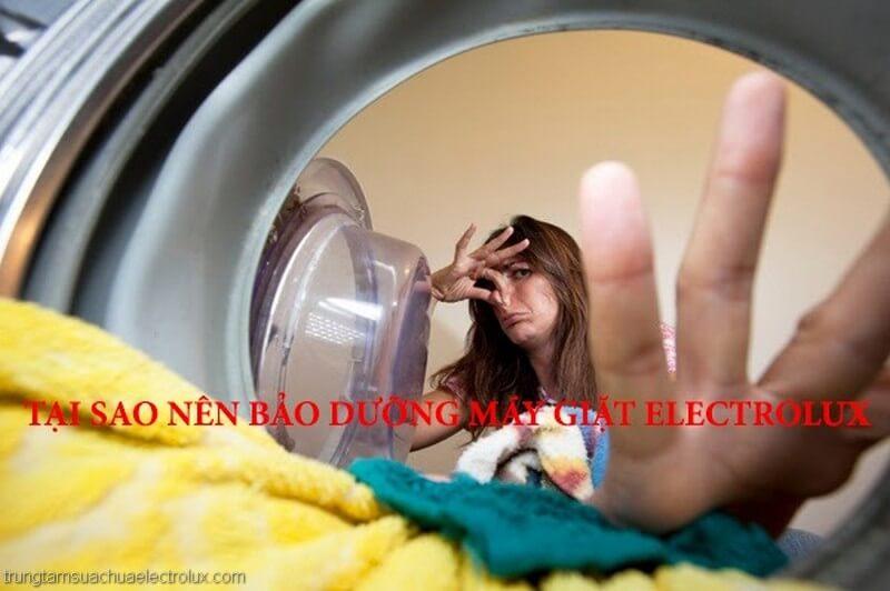Li do bạn nên thường xuyên bảo dưỡng vệ sinh máy giặt định kỳ