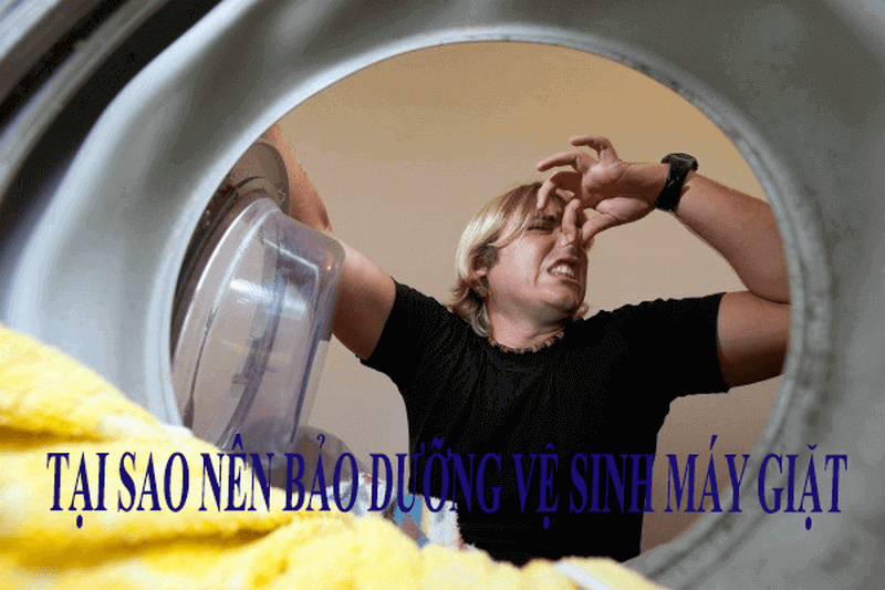 Vì sao bạn nên bảo dưỡng vệ sinh máy giặt định kỳ