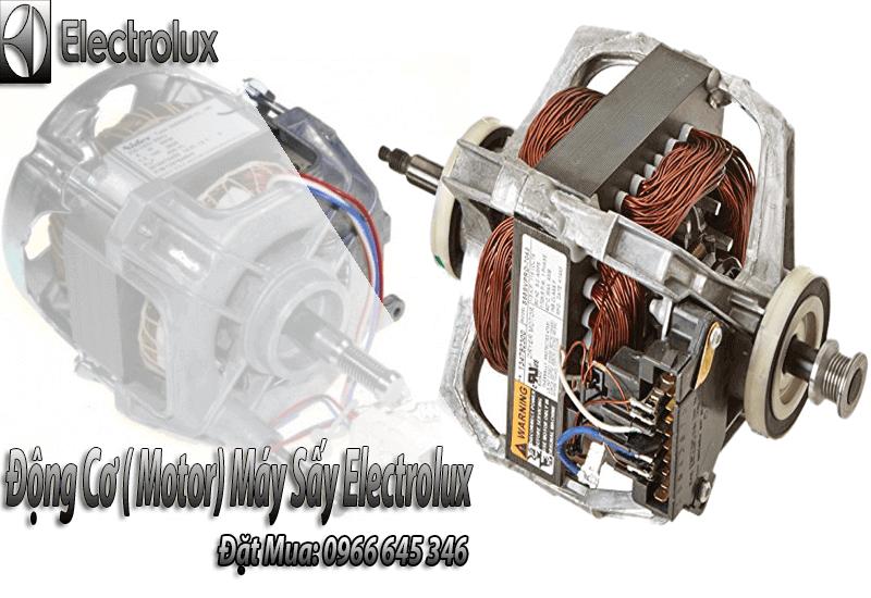 đông cơ máy sấy electrolux