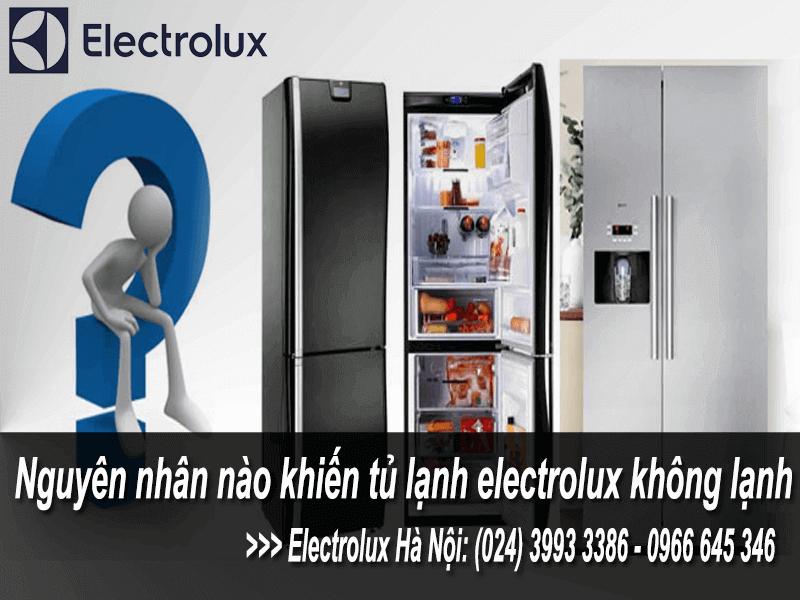 Nguyên nhân tủ lạnh electrolux không lạnh